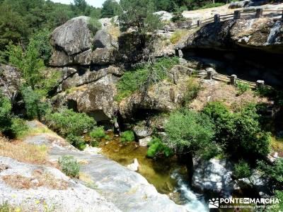 Pesquerías Reales - Monte de Valsaín; rutas de senderismo; excursiones madrid;viajes mayo senderis